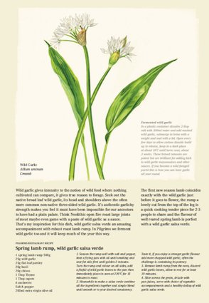 Wild Garlic - March
