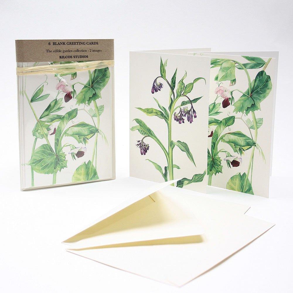 6 Pack Greeting Cards The Edible Garden Kilcoe Studios