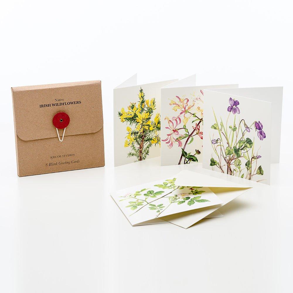 6 pack of greeting cards irish wildflowers kilcoe studios m4hsunfo