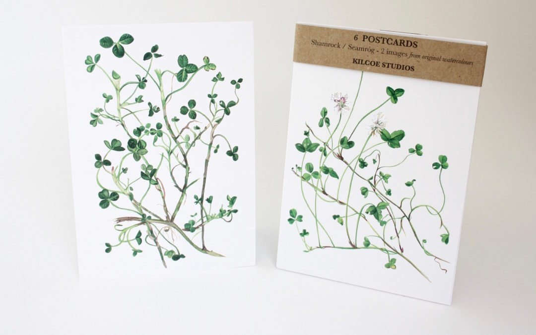 SHAMROCK POSTCARDS